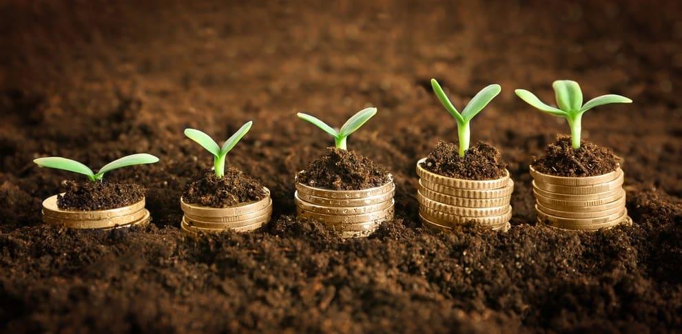 5 Schritte zur Unternehmensnachfolge
